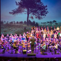 Jeugdorkest Symfonica in D gaat online – de inschrijving is geopend